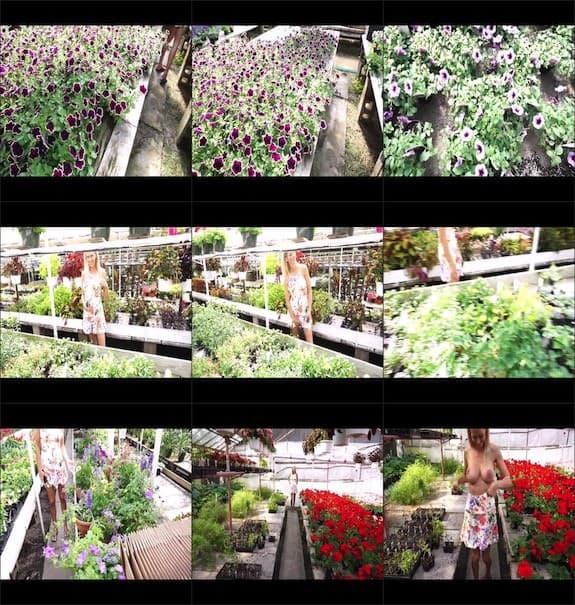 hollyhotwife - Flashing With Flowers